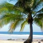 tropicolatino-beachfronthotel07