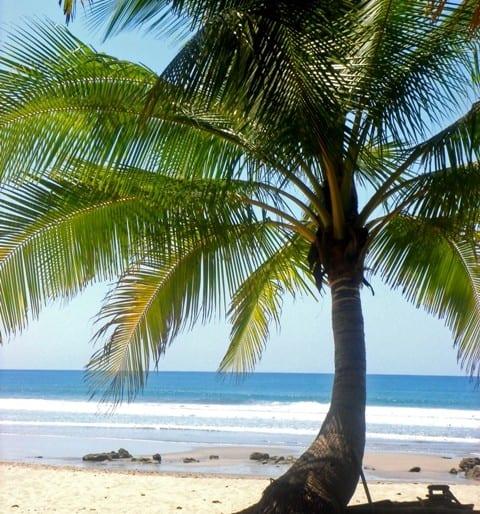 A dream beach destination!!