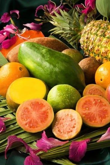 Tantalizing organic cuisine stars at Pranamar Villas