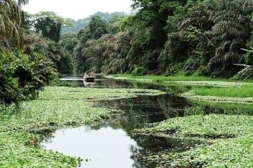 Manatus Tortuguero – Sustainable Tourism to a T..