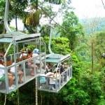 Aerial tram at Veragua Rainforest Adventure Park near Limon, Costa Rica