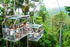 Veragua Rainforest Park is a top one-day tour on Costa Rica's Caribbean Coast