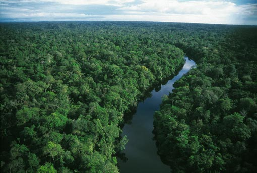 Tropics Play Pivotal Role in Climate Change