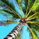 Costa Rica is your perfect warm winter sun holiday