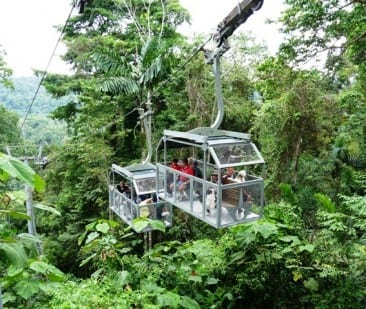 Veragua Aerial Tram Offers Glimpse into Hidden Rainforest