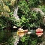 valledoradotours-kayakingcostaricatortuguero