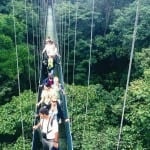 Hanging Bridges Costa Rica. On Monteverde's Sky Walk.