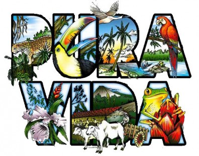 10 vital cultural tips to know when traveling to costa rica 10 vital cultural tips to know when traveling to costa rica enchanting costa rica m4hsunfo