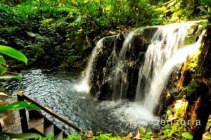 Dantas Waterfall at Sensoria