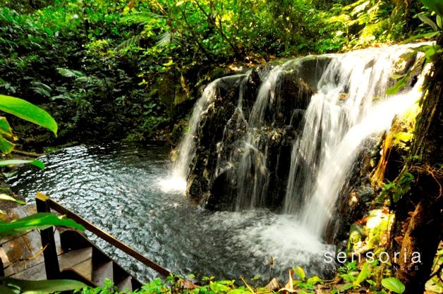 Sensoria eco-tour thrills the senses in Guanacaste, Costa Rica
