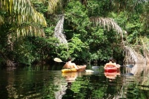 Kayaking in Tortuguero Costa Rica
