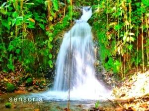 La Jicara Waterfall at Sensoria