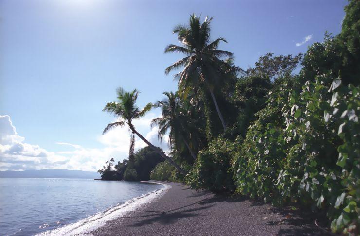 Costa Rica eco lodge is unique place for rainforest retreats
