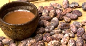 Fascinating Puerto Viejo Chocolate Tour reveals ancient secrets