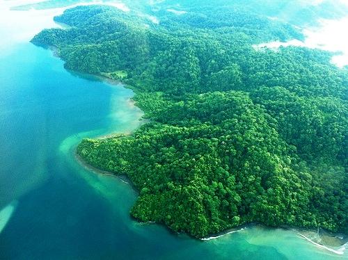 Golfo Dulce and Osa Peninsula, Costa Rica
