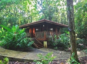 Playa Nicuesa bungalows in the jungle