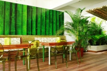 Nature-themed hotel brings green oasis to urban San José Costa Rica
