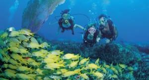 Scuba diving on Costa Rica Caribbean Coast