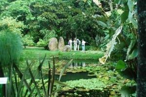 Else Kientzler Botanic Garden in Sarchi Costa Rica