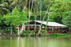 Lirio Lodge Tortuguero Costa Rica