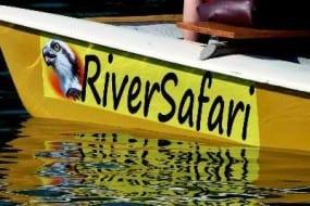 Fun Nosara River Safari Tour is best for wildlife in Nosara Costa Rica