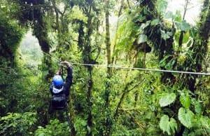 Canopy zipline, image by ICT