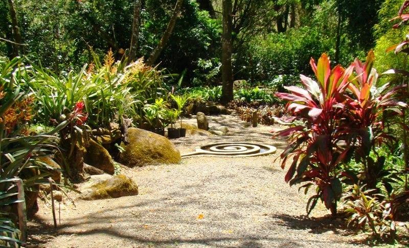 Exotic Plants At Else Kientzler Botanic Garden Costa Rica