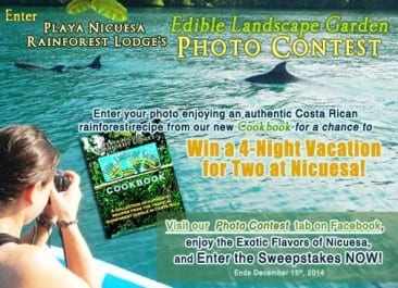 Win a trip to Playa Nicuesa Rainforest Lodge in Costa Rica with cookbook photo contest
