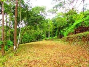 Portasol Lot 6 for sale in Costa Rica