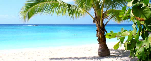 Caribbean Coast Punta Uva Costa Rica