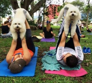 Dog yoga Costa Rica