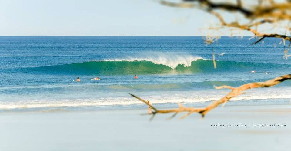Surfing Santa Teresa, image by Carlos Palacios