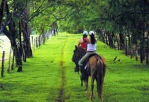 Horse ride at Hacienda Guachipelin