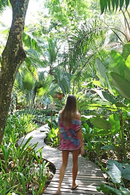 Le Cameleon garden pathways