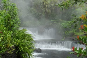 Thermal hot springs at Arenal Volcano, Tabacon Resort