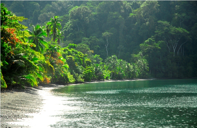 5 Tropical beaches you want to visit in southern Costa Rica
