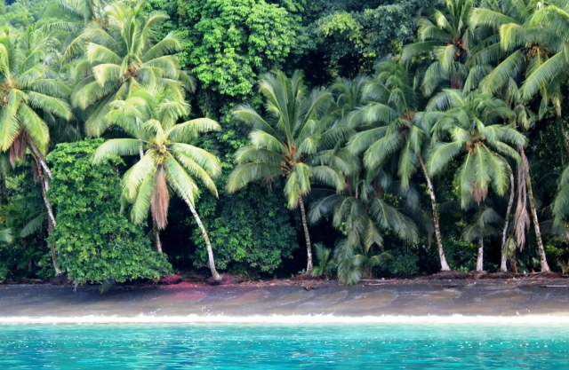 Playa San Josecito, Golfo Dulce, Costa Rica