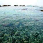 Playa Hermosa Costa Rica tidepool