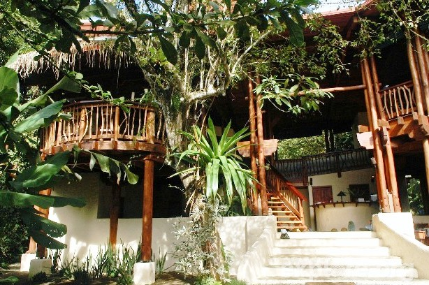Playa Nicuesa treehouse main lodge