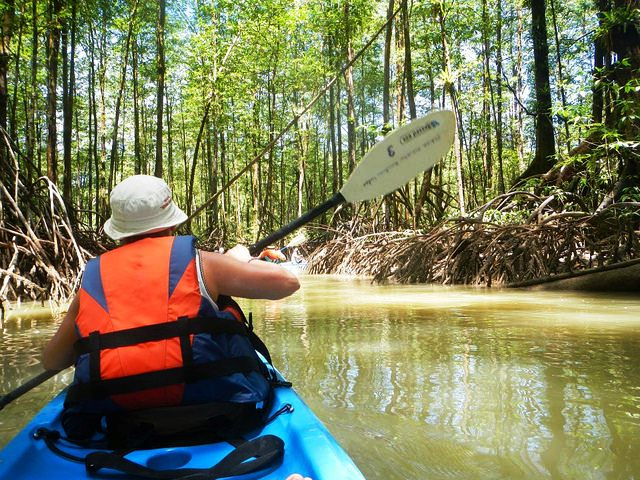 Mangrove kayaking at Playa Nicuesa Lodge in Costa Rica