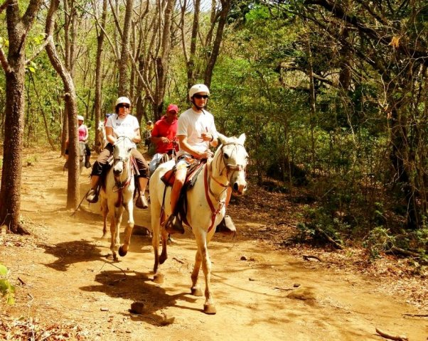 Horse riding through the forest at Rincon de la Vieja