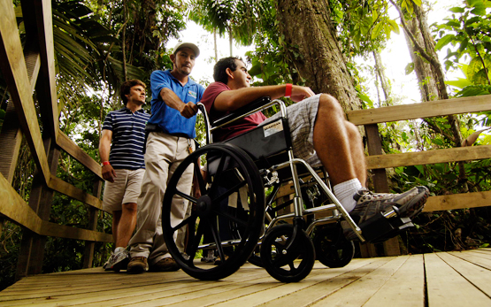 Accessible rainforest trails at Veragua Rainforest adventure park