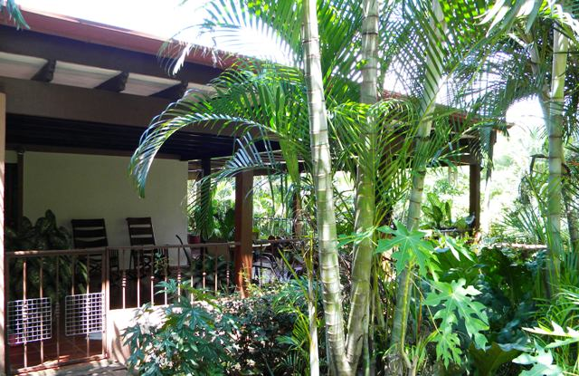 Costa Rica house terrace shade