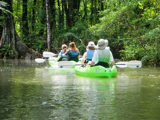 Rio Esquinas mangrove kayaking