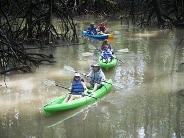 Kayaking Golfo Dulce in Costa Rica