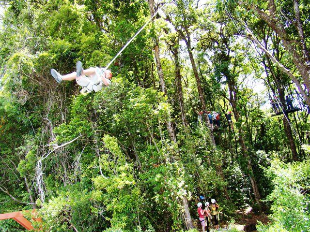 Canopy tour Tarzan Swing at El Establo Hotel in Monteverde Costa Rica