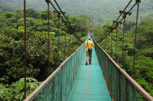 Selvatura hanging bridges in Monteverde Costa Rica