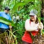 Veragua Rainforest tree planting program