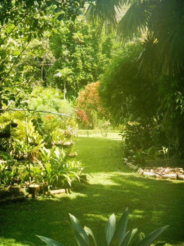 Casa Orquideas Botanical Garden Golfo Dulce Costa Rica