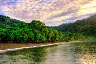 Explore the Costa Rica rainforest with expert scientists